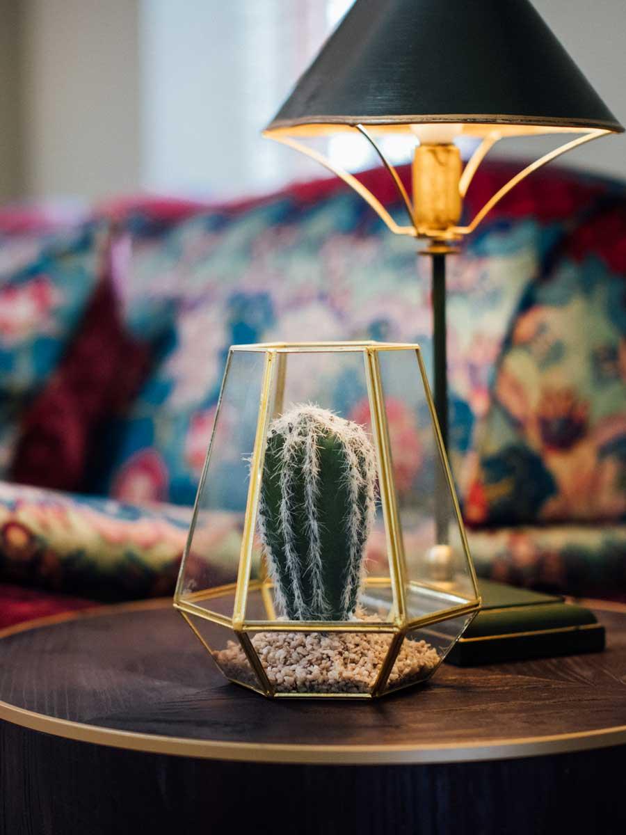 Bistro Cactus